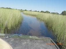 Okavango Delta World Heritage Site